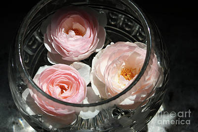 Photograph - Floating Flowers by Mary-Lee Sanders