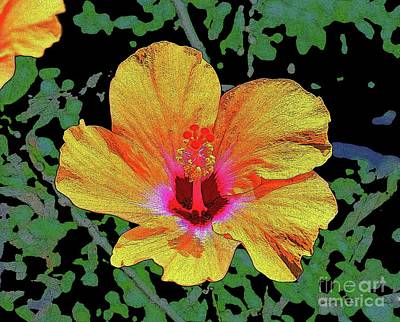 Photograph - Floating Hibiscus by Craig Wood