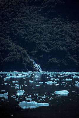 Photograph - Floating Ice, Tracy Arm Fjord by David Halperin