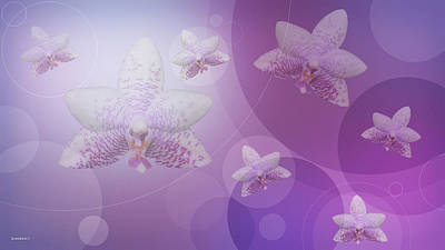 Photograph - Floating Orchids In Time by Gary Crockett