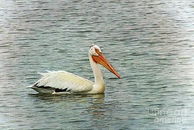 Digital Art - Floating Pelican by Krista-