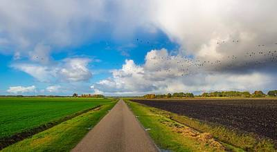 Photograph - Flock Of Birds Over A Rural Landscape by Skitterphoto