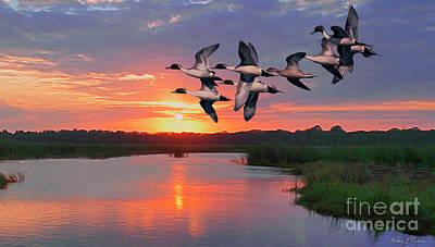 Digital Art - Flock Of Pintail Ducks by Walter Colvin