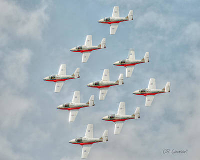 Photograph - Flock Of Snowbirds by CR  Courson