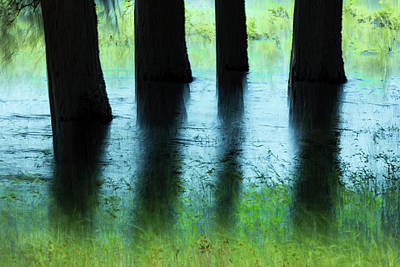 Photograph - Flooded by Deborah Hughes