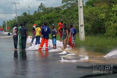 Photograph - Flooded Road On The Amazon by Nareeta Martin