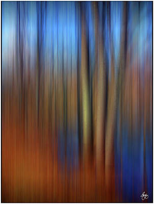 Photograph - Floodplain Forest Abstract by Wayne King