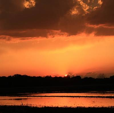 Photograph - Sunset After A Spring Storm by Chris Berry