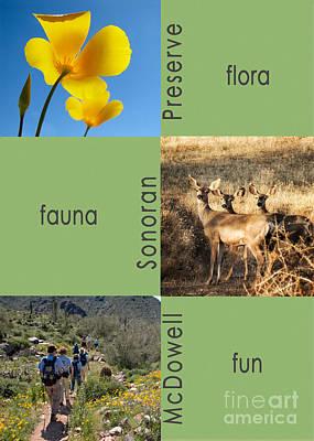 Photograph - Flora, Fauna, Fun by Marianne Jensen