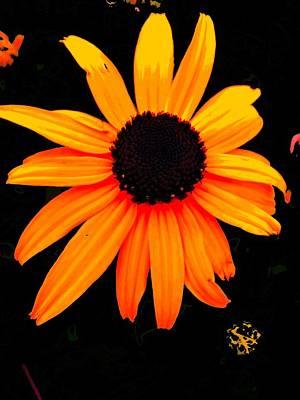 Floral 1 Art Print by Chuck Landskroner