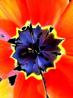 Floral 1229 Art Print by Chuck Landskroner