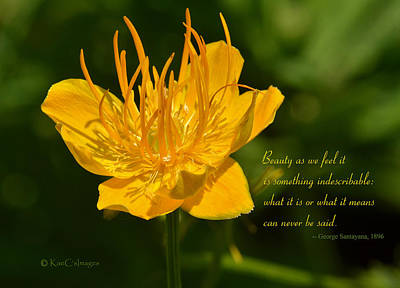 Photograph - Floral #3 With Text by Kae Cheatham
