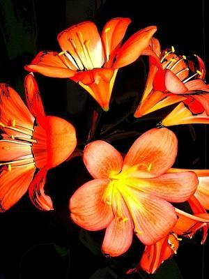 Floral 6019 Art Print by Chuck Landskroner