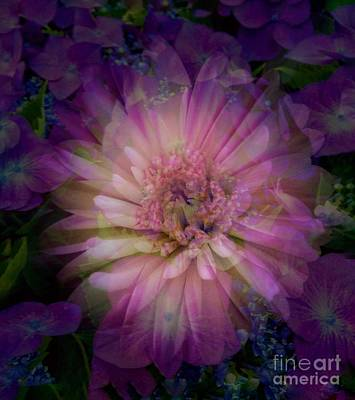 Photograph - Floral Abstract Design 2 by Joan-Violet Stretch