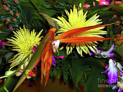 Photograph -  Floral Arrangement - Bird-of-paradise And More by Merton Allen