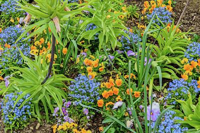 Bight Colors Photograph - Floral Arrangement by Jon Berghoff