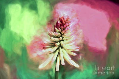 Photograph - Floral Art - Red Hot Poker by Kerri Farley