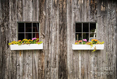 Photograph - Floral Barn Planters by Glenn Gordon