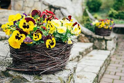 Floral Basket Art Print by Pati Photography