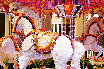 Installation Art Photograph - Floral Carousel  by Art Spectrum