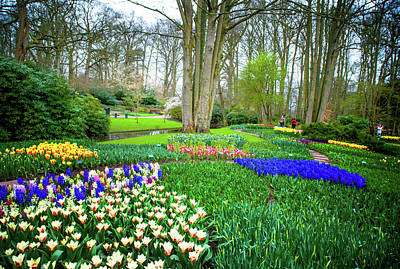 Photograph - Floral Carpet Of Keukenhof Garden by Jenny Rainbow