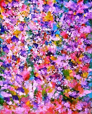 Digital Art - Floral Color Burst by Patricia Taylor
