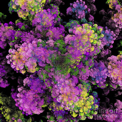Digital Art - Floral Fancy Abstract by Andee Design