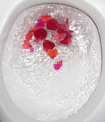 Floral Flush Art Print