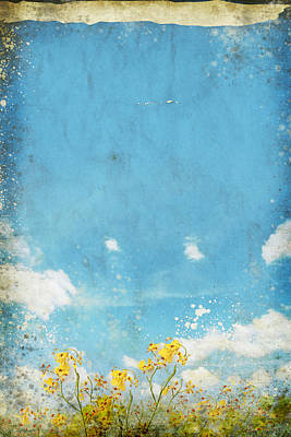Vintage Photograph - Floral In Blue Sky And Cloud by Setsiri Silapasuwanchai