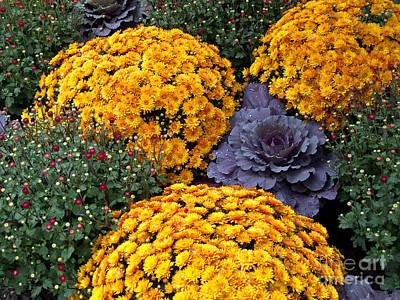 Floral Masterpiece Art Print by Ann Horn