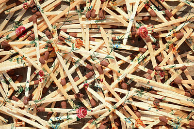 Surrealistic Photograph - Floral Matchsticks by Sumit Mehndiratta