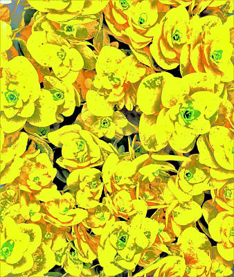 Comedian Drawings - Floral Organic yellowtan  by Christine McCole