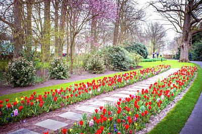 Photograph - Floral Path In Keukenhof Botanic Garden by Jenny Rainbow