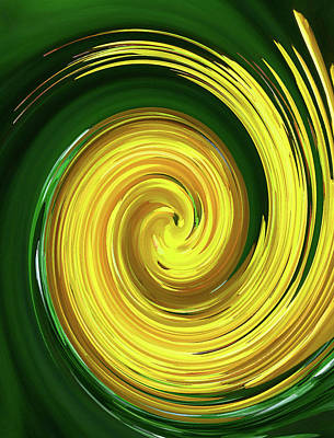 Photograph - Floral Swirl 5 by Margaret Saheed