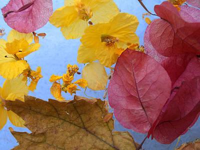 Photograph - Flore Flottant by Stan  Magnan