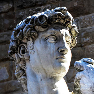 Michaelangelos David Photograph - Florence, Italy  David's Head Statue by Barbara Peonio