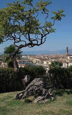 Photograph - Florence From Fiesole by Caroline Stella