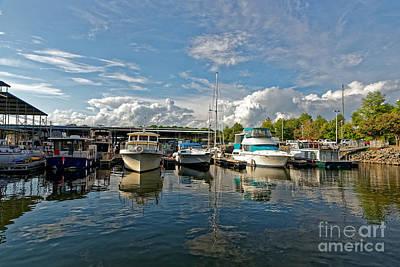 Winter Animals - Florence Harbor Marina by Paul Mashburn
