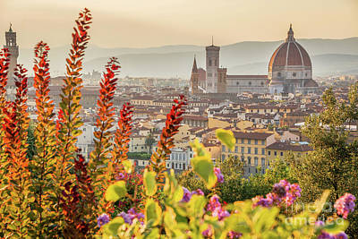 Florence In Summer Art Print