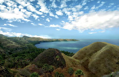 Photograph - Flores Island View by Anthony Dezenzio