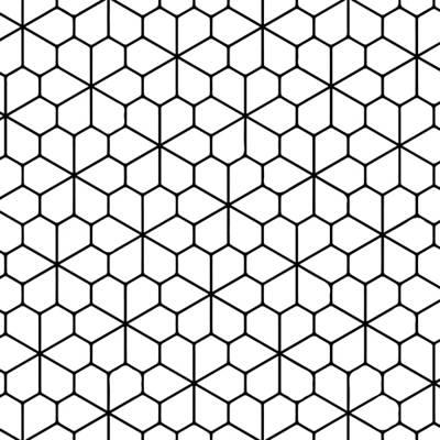 Digital Art - Floret Pentagonal by Anthony Fishburne