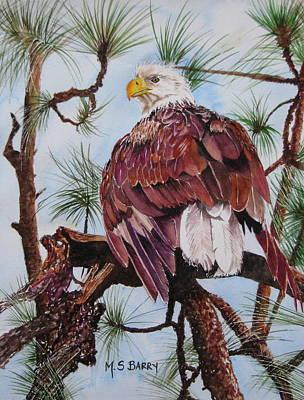 Florida Bald Eagle Original by Maria Barry