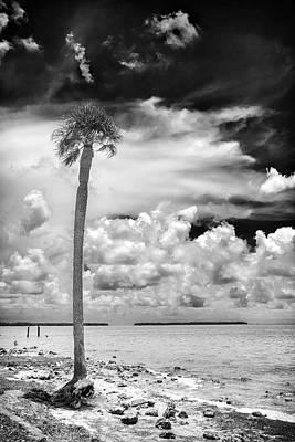 Florida Bay 6943bw Art Print