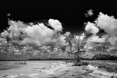 Photograph - Florida Bay 6947bw by Rudy Umans