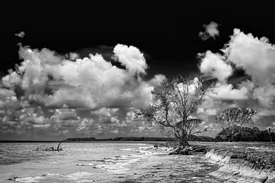 Florida Bay 6947bw Art Print