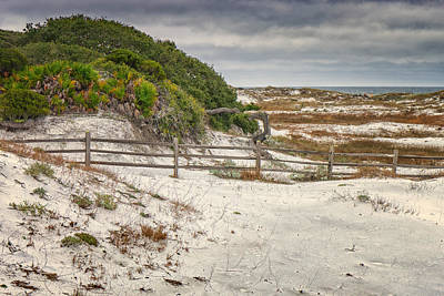 Photograph - Florida Beach On The Gulf Of Mexico Dsc09968_16 by Greg Kluempers
