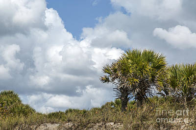 Photograph - Florida Clouds by Karin Pinkham