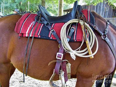 Photograph - Florida Cracker Cow Whip by D Hackett
