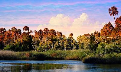 Photograph - Florida Dream by Sheri McLeroy
