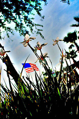 Photograph - Florida Flag by Emily Stauring